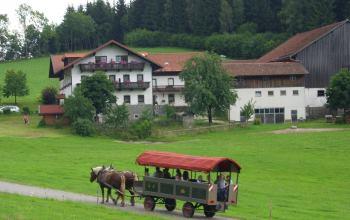 hacker-ferienhof-kutschenfahrten-bayern-zimmer-halbpension