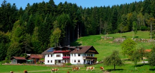 hacker-kinderfreundliche-bergpension-bayerischer-wald-familienpension-breitbild-1400