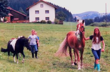 Pferde und Pony Reiten für Kinder