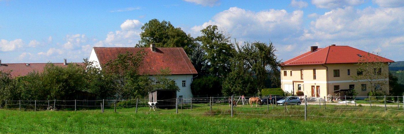 handlhof-familienfreundlicher-kinderbauernhof-bayern