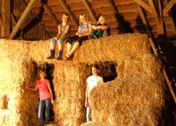 Kinderfreundlicher und Familienfreundlicher Bauernhof