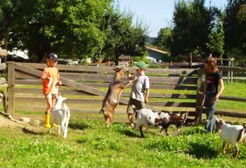 Bauernhofurlaub im Ferien Bungalow Bayern