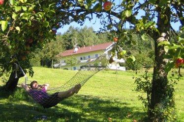 hotel-hoellensteinsee-landhotel-miethanner-garten-natur