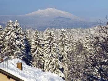 jutta-lindberg-winterurlaub-nationalpark-bayerischer-wald