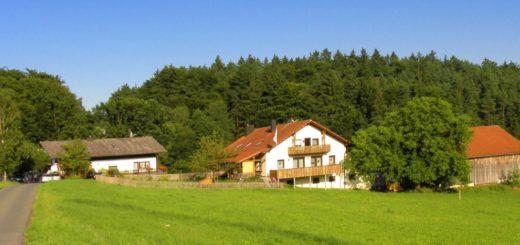 koller-ferienhof-oberpfalz-bayerischer-wald-bauernhof-ansicht