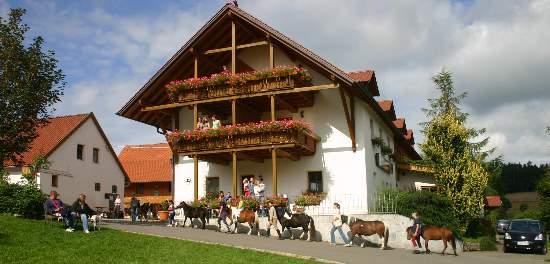 Abenteuer Reiterhof Oberpfalz Reitstall Bayern