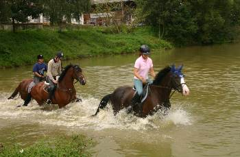 kollerhof-reiterhof-reiten-reiterpension-bayerischer-wald-tagesritte
