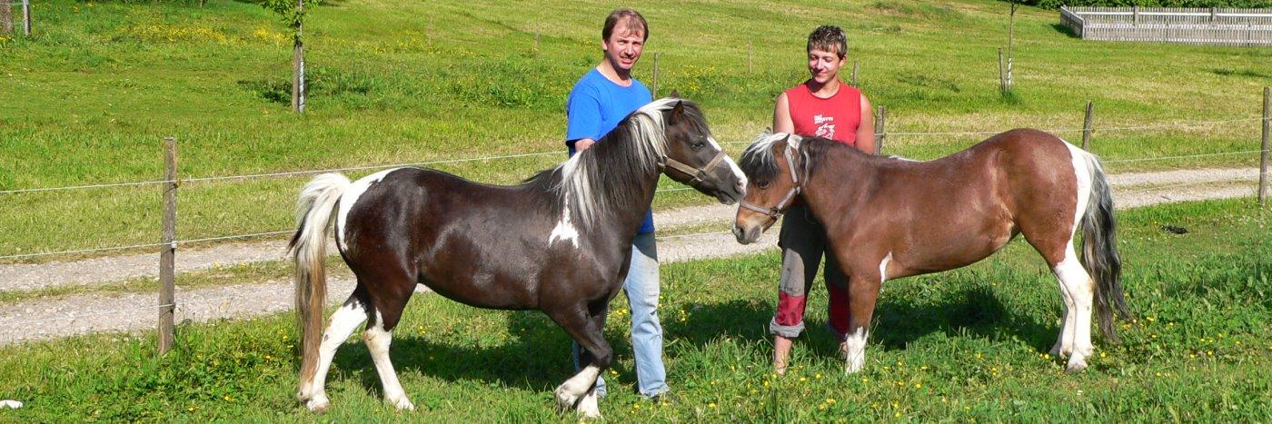 Bauernhofurlaub in Deutschland Familienurlaub mit Ponyreiten bei Bodenmais