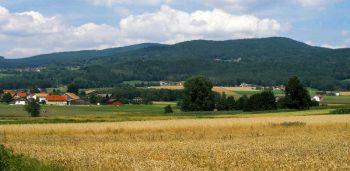 kreuzer-naturerlebnis-wald-berge-wandern
