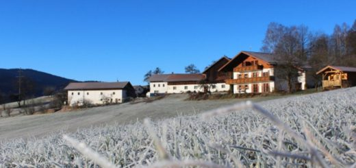 kriegerhof-arrach-bauernhof-amberger-bayerischer-wald