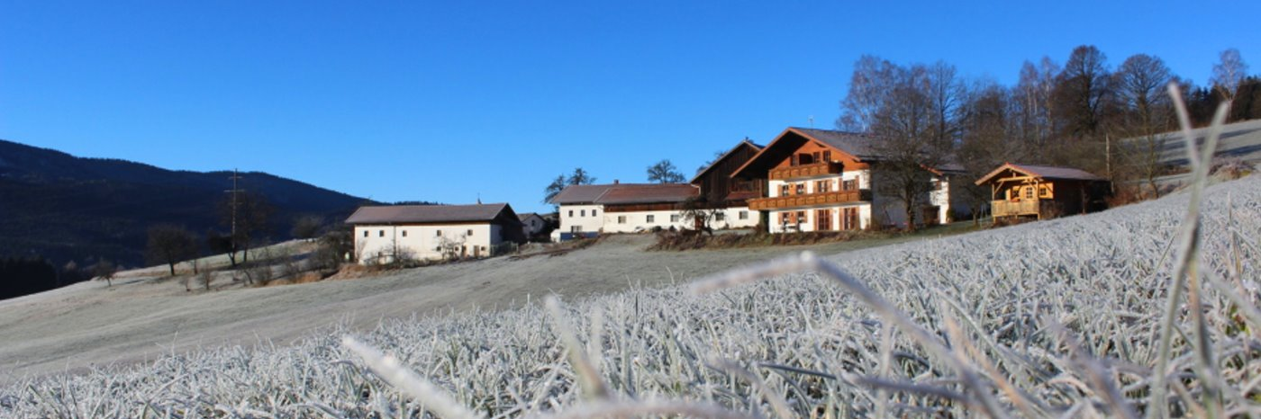 Bayerischer Wald Familien Bauernhof mit Kühe und Hühner