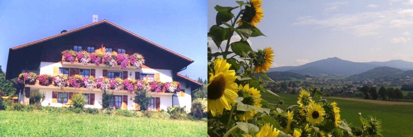 Urlaub am Bauernhof Kriegerhof in Arrach Ottenzell Ferienhof Amberger