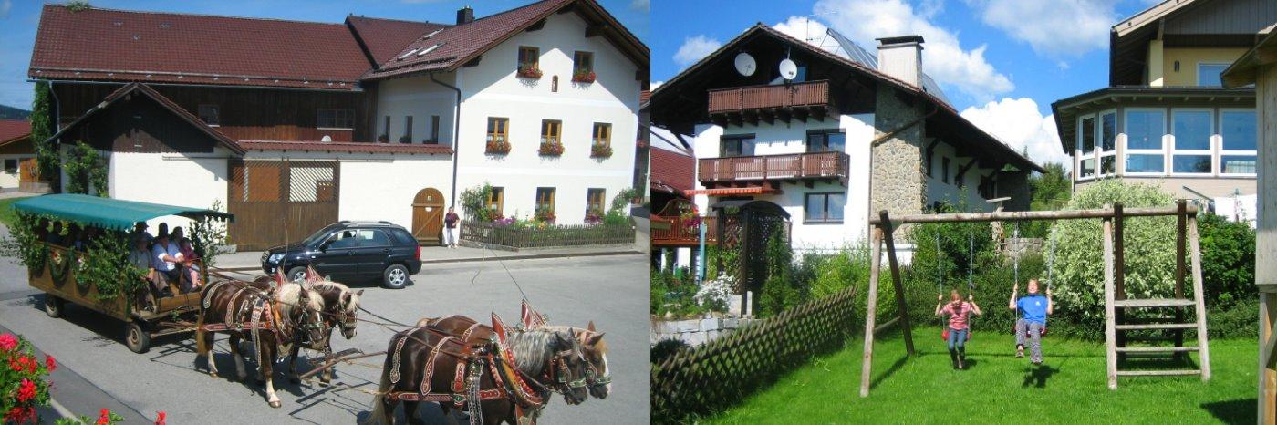 Bayerischer Wald Kleinkinder Urlaub in Bayern am Bauernhof