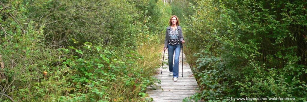 Nordic-Walking im Bayerischen Wald Trendsport in Bayern