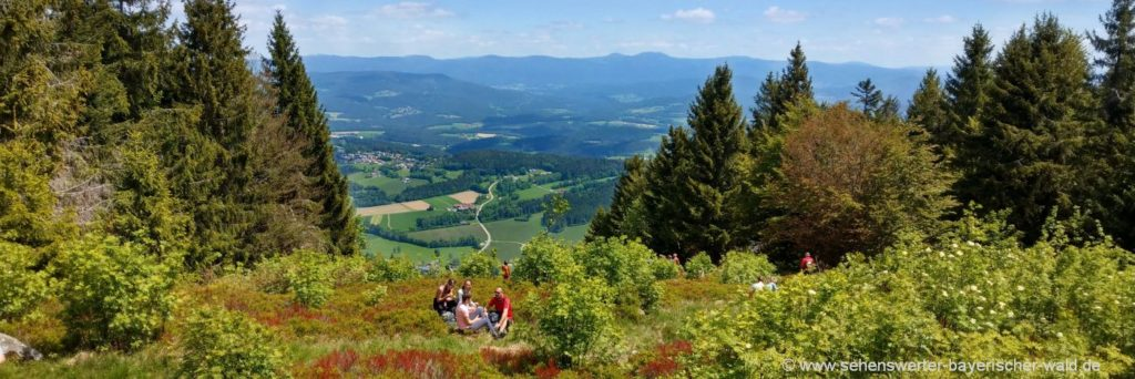 Bayerischer Wald Kurzurlaub Familie mit Hund & Wandern