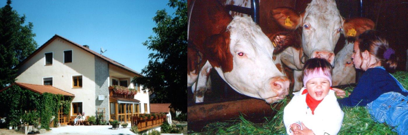 Kinderlandhof Abenteuerferien in Bayern Kinderland Gastgeber Lasserhof Deutschland