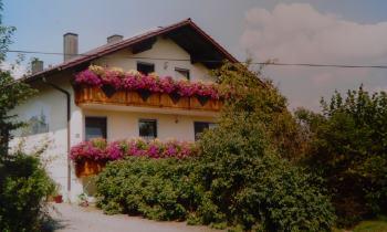 Reisen mit Hund in Bayern