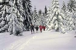 Gasthof und Hotel am Wintersportgebiet Arber & Hoher Bogen