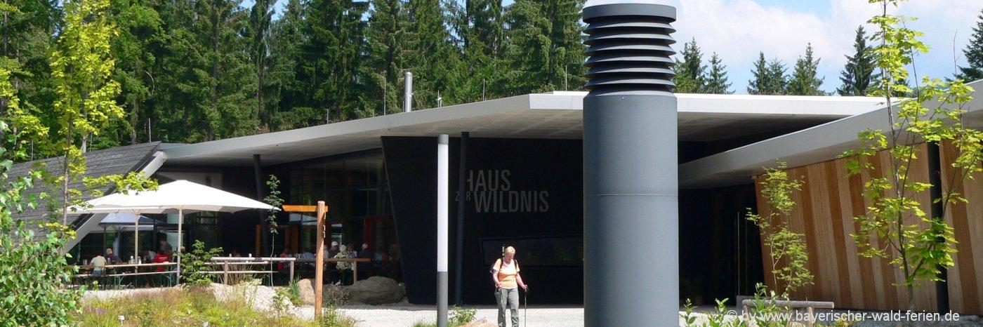 ausflugsziele-ludwigsthal-haus-zur-wildnis-bayerischer-wald
