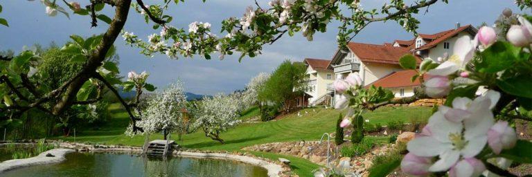 miethanner-landhotel-bayerischer-wald-see-viechtach