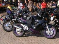 motorradfahren-bayerischer-wald-bikertouren-erlebnis