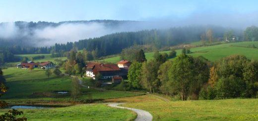muhr-auerkiel-gasthof-bauernhofurlaub-böbrach-landschaft
