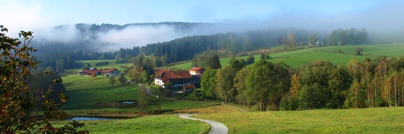 Bayerwald Pension in Böbrach Gasthof bei Bodenmais im Bayerischen Wald