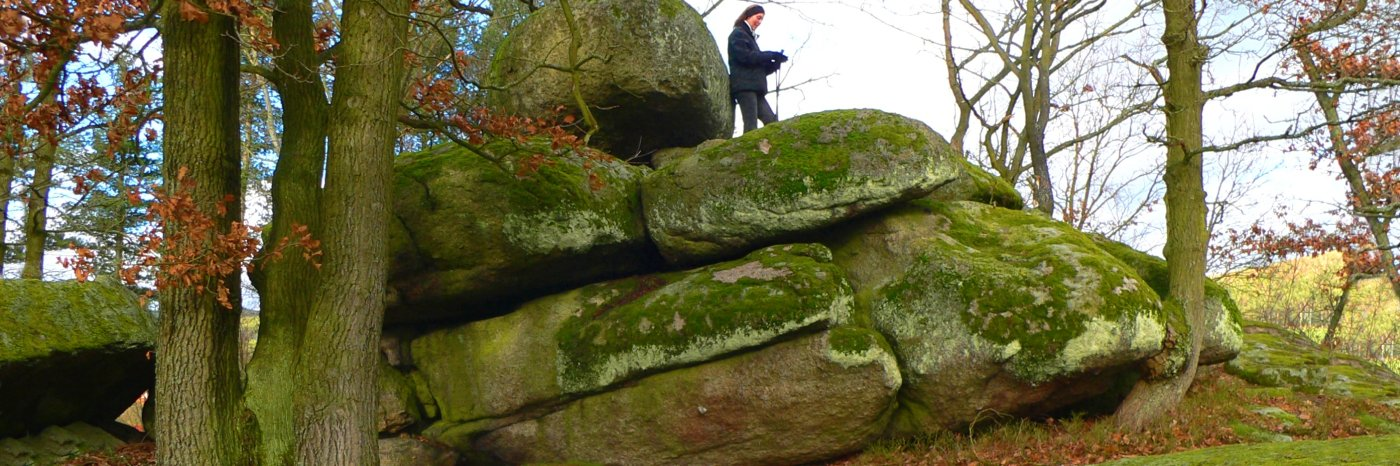 Druidensteine in Kröblitz Opfersteine bei Neunburg vorm Wald