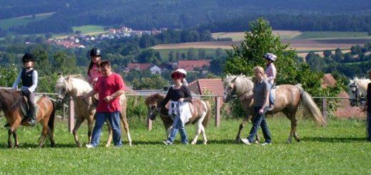 nissl-ponyhof-bayern-kinderreiterferien-oberpfalz-ponyreiten