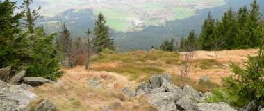 Ausblick und Panoramawanderung am Osser