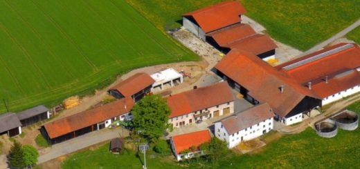 piendl-guthof-bauernhofurlaub-bayerischer-wald