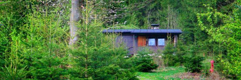 plattenhöhe-einsame-ferienhütten-bayerischer-wald-einfache