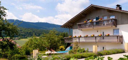 pongratz-linde-neukirchen-hotel-gasthof-hohen-bogen-bayerischer-wald