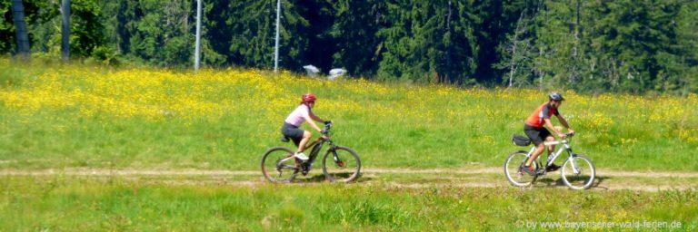 radfahren-bayerischer-wald-mountainbike-radurlaub-niederbayern-oberpfalz
