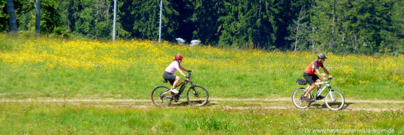 Radfahren Aktiv Urlaub oder Romantik Wochenende Deutschland in Niederbayern
