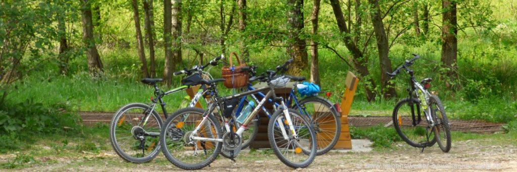 Bayerischer Wald Outdoor Aktivitäten wie Radfahren & Wandern