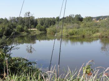 raith-fluss-regen-altwasser-hechte-karpfen-aale-waller-angeln