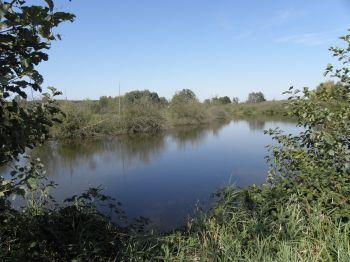 raith-regen-altwasser-fischerferien-bayern-angeltouren
