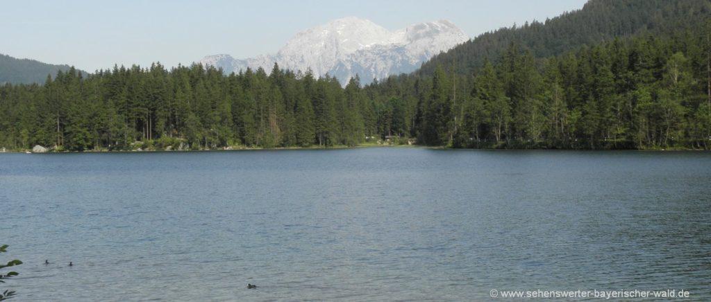 ramsau-hintersee-berchtesgadener-urlaub-bayern-sommer-berge