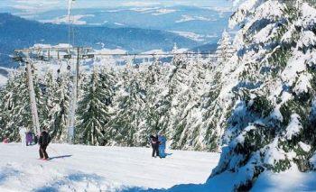 reinerhof-winterferien-skilift-sankt-englmar-skifahren-skischule