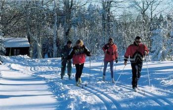 reinerhof-winterurlaub-langlaufloipen-st-englmar-langlaufen