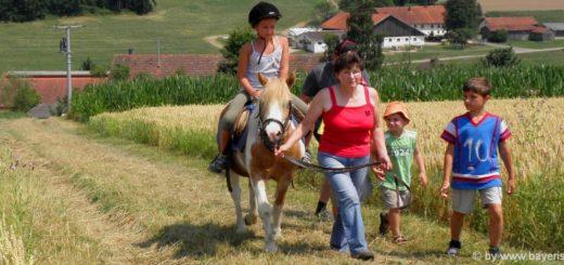 reiturlaub-bayerischer-wald-kinder-ponyreiten-bayern