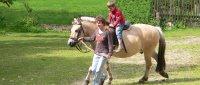 Reiturlaub Ponys und Pferde zum Reiten