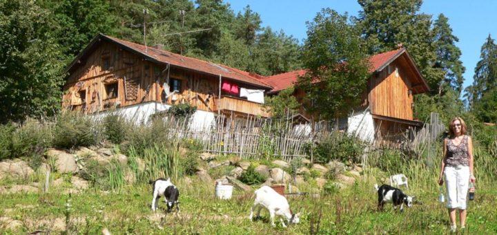 richard-bayerischer-wald-almhütten-bayern-ferienhütten-mieten-