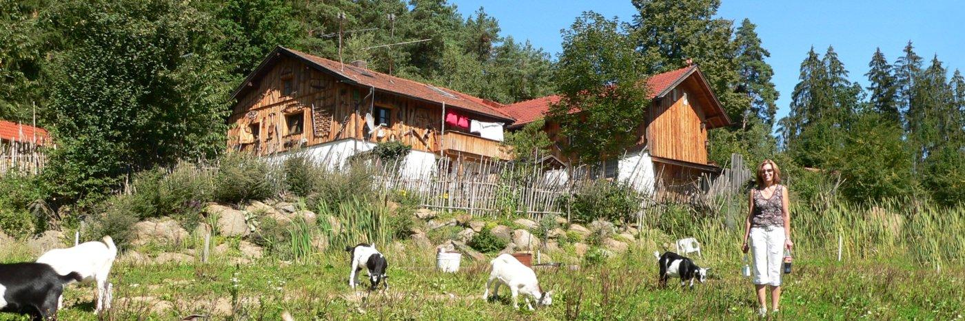Bayerischer Wald Almhütten in Bayern mieten für 2 - 6 Personen