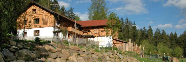 richards-berghütten-bayerischer-wald-hüttenurlaub-ferienhaus