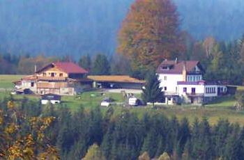 runenhof-bauernhofurlaub-bischofsreut-pension-ansicht