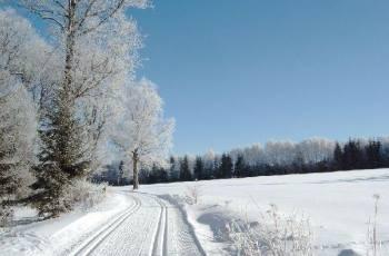 Winterurlaub Skigebiet Mitterfirmiansreut - Bild ID: schneesicheres-skigebiet-langlaufgebiet-winterurlaub