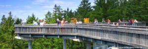 Ausflugsziele Sankt Englmar Sehenswürdigkeiten Waldwipfelweg Attraktion