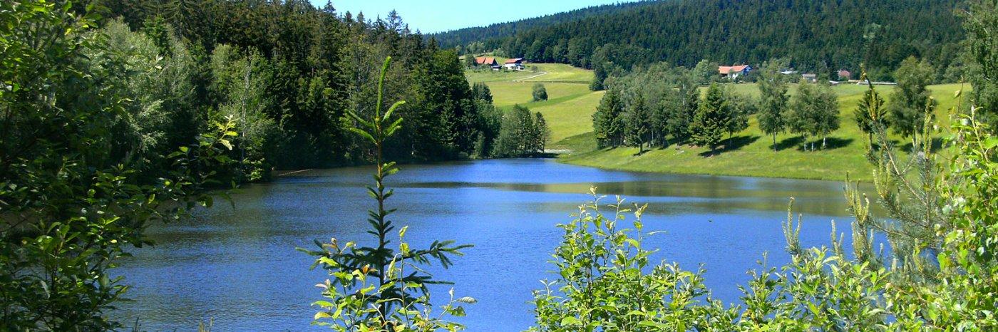 Altreichenau Ferienwohnungen mit Seeblick Angelurlaub im Dreiländereck